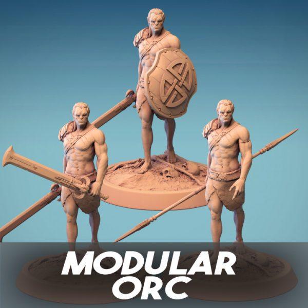 720X720 modular orc