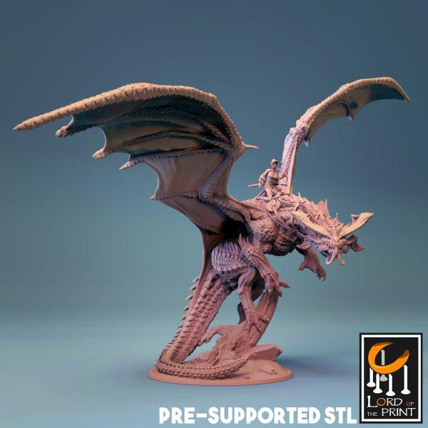 FlyingDragon 01